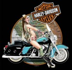 harley davidson chopper bike california map